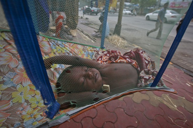 A mosquito net on a street corner (Photo: Danish Siddiqui/Reuters)